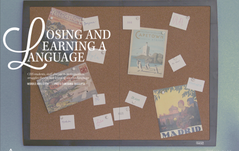 Losing and Learning a Language