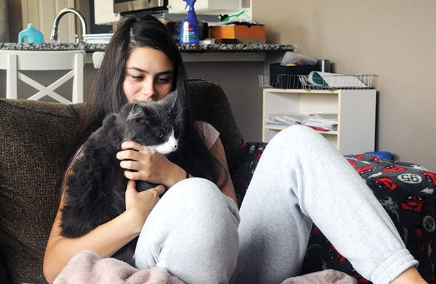 Junior Megan Fortier plays with her cat Winston. She said having a companion at home has helped break up the tension of a now two-person household.