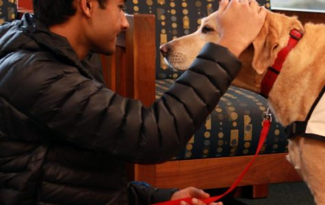 "Senior Hari Ganeshan pets his dog Copper, a trained therapy dog. They volunteered for ""Paws to Read"" at the Carmel Clay Public Library on Nov. 23."