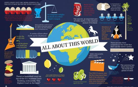 All About The World